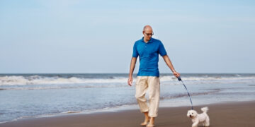 best Dog Friendly Beaches in Florida