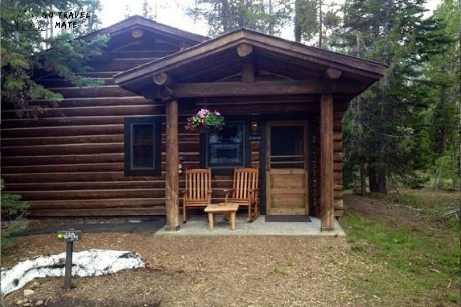 Wild Lily Cabins