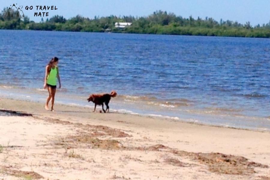 Dog-friendly beach -Palma sola causeway
