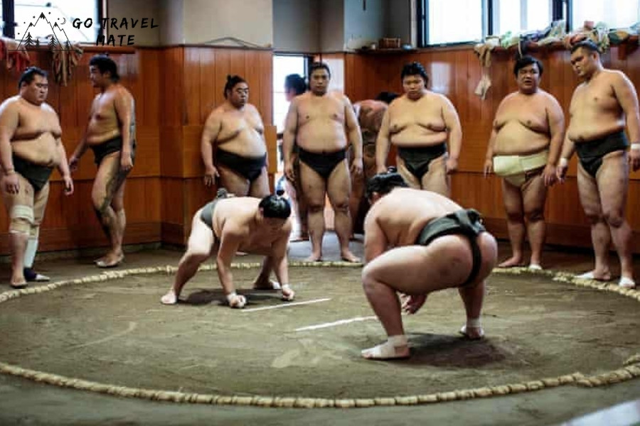 Watch A Sumo Show – Wrestlers in Action